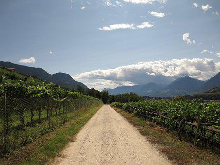 Summer, Vines, Away, Clouds, Mountains