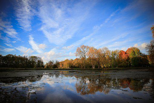 Landscape, Twilight, Lake, Sunset, Swan, Fall