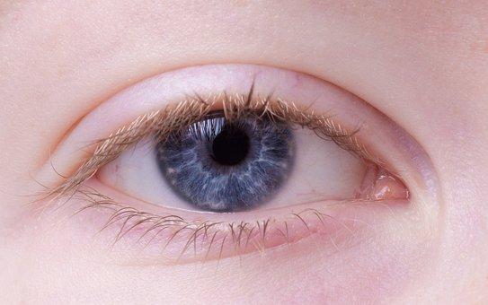 Eye, Female, Blue, Blue Eye, Portrait, Close, Human
