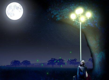 Moonlight, Moon, Scene, Night, Full Moon, Light, Sky