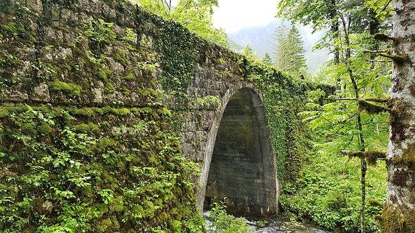 Slovenia, Nature, Bridge, River, Landscape, Trees
