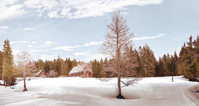 Wintry, Alm, Alpine, Mountain Hut, Snow, Hut, Landscape