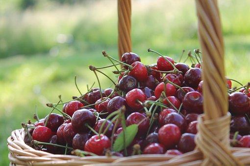 Cherries, Cart, Nature