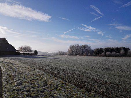 Hoarfrost, Blue Sky, Field, Trees