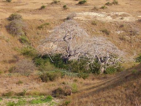 Angola, Luanda, Landscape