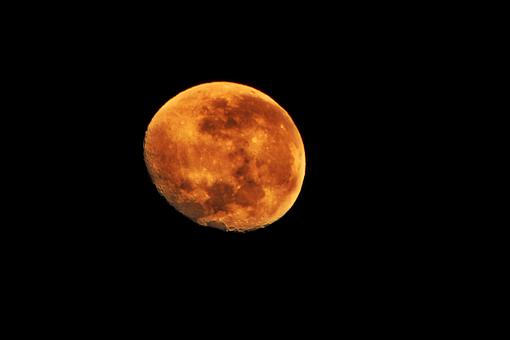 Moon, Night, Orange, Darkness, Sky, Night Photograph