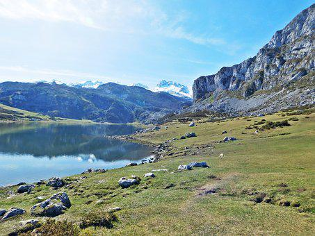 Covadonga, Lake, Mon, Spain, Asturias, Picos, Nature
