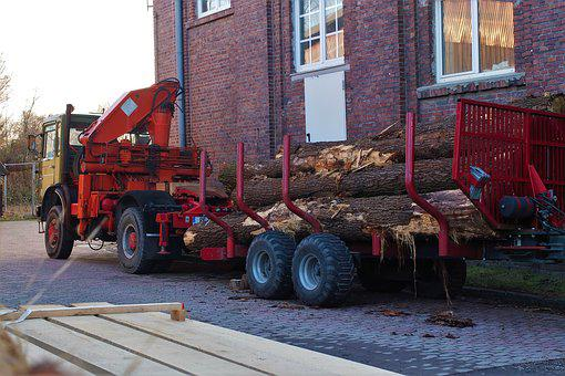 Oak Wood, Transport, Lumber