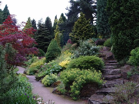 Garden, Trees, Nature, Landscape, Path, Foliage
