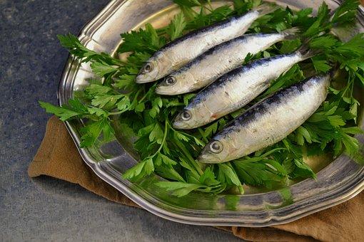 Sardines, Fresh Fish, Fish, Parsley, Plated