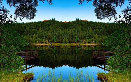 Pa, Bo, Nature, Water Tree, Bridge, Water, Green, Sky