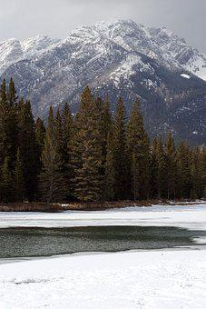 Banff, Lake, Ice, Conifers, Mountains, Snowy