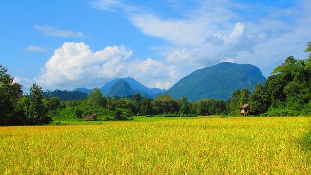 Country Side, Laos, Field, Nature, Farm, Landscape