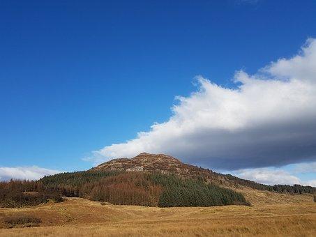 Scotland, Mountain, Field