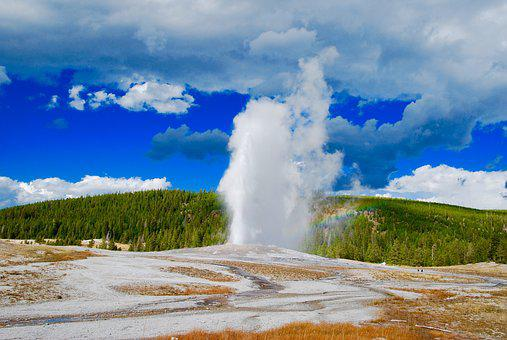 Geyser, Aspen, Mountains, Yellowstone, National, Park