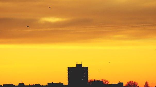 Architecture, Backlit, Birds, City, Clouds, Dawn, Dusk