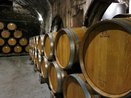 Wine, Barrels, Winery, Wine Barrel, Vineyard, Cask