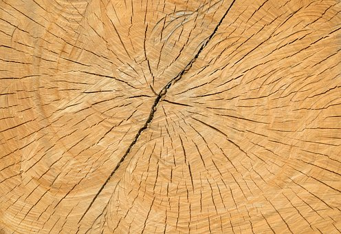 Wood, Cracks, Structure, Old, Background, Nature, Brown
