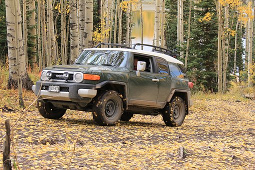 Jeep, 4wd, Four Wheeling, Fj Cruiser, Fall