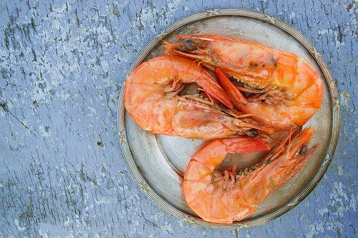 Shrimps, Food, Seafood, Meal, Fish, Dish, Delicious