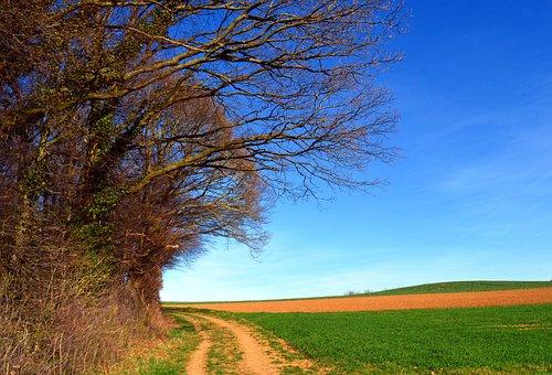 Trees, Landscape, Spring, Sky, Aesthetic, Nature, Kahl