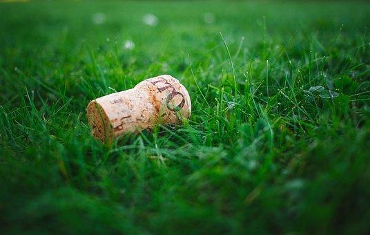 Blur, Close-up, Cork, Field, Focus, Grass, Grass Field