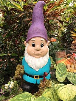 Gnome, Garden, Lawn, Hat, Dwarf, Grass, Beard, Funny