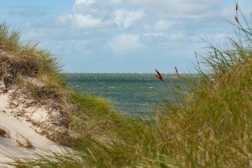 Dune, Sea, North Sea, Dune Grass, By The Sea, Island