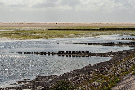 Amrum, Island, North Sea, Beach, The Island Of Amrum