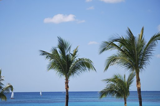 Beach, Ocean, Mexico, Tropical, Summer, Vacation, Sea