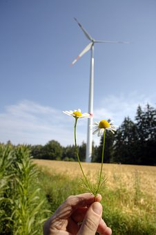 Environmental Protection, Wind Power
