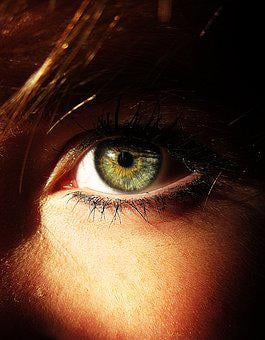 Eye, Colour, Green, Face, Bright, Make-up, Woman