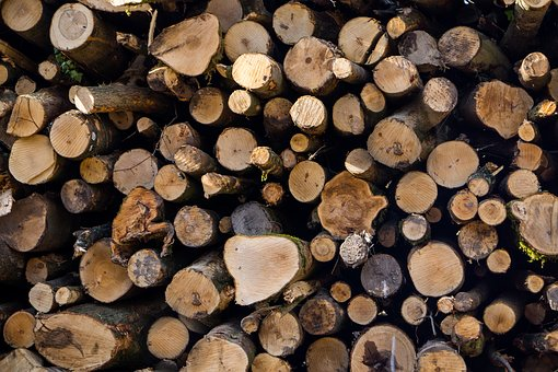 Logs, Wood, Woodpile, Cut, Tree, Lumber, Wooden, Nature