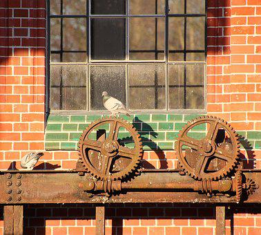 Pigeons, Gears, Wall, Stone Wall, Wheels, Stainless