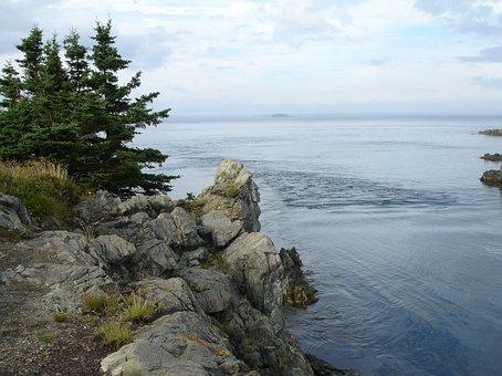 Rocky, Lake, Water, Scenery, Tree