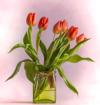 Tulips, Vase, Red, Bouquet, Flowers, Spring
