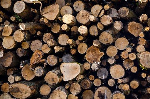 Logs, Wood, Woodpile, Cut, Tree, Lumber, Wooden, Nature