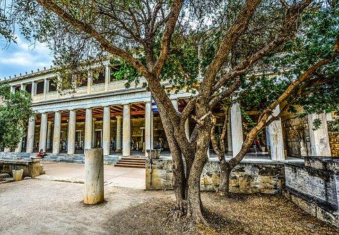 Tree, Athens, Acropolis, Museum, Columns, Architecture