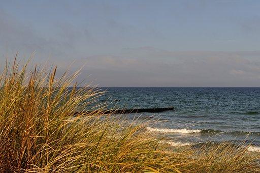 Baltic Sea, Beach, Grass, Sky, Sea, Coast, Dunes, Water