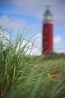 Texel, Dunes, Summer, Lighthouse, Grass, Holland