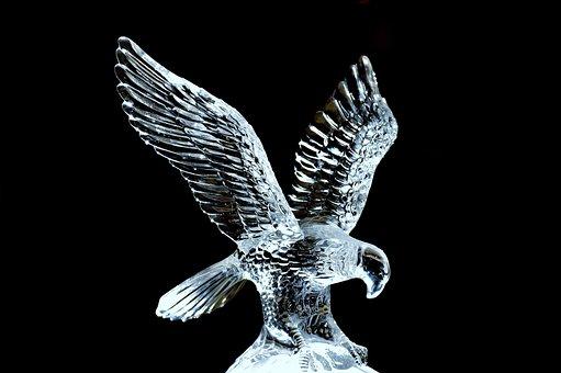 Adler, Glass, Sculpture, Fragile, Transparent, Noble