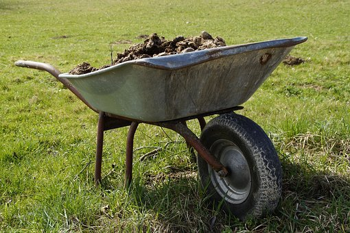 Wheelbarrow, Farm, Crap, Agriculture, Work