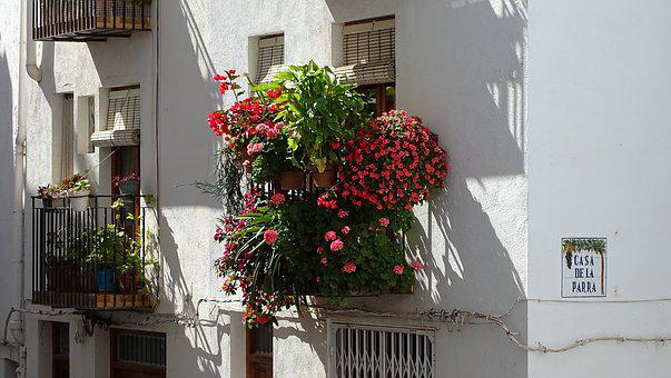 Window, Flowers, Spring, Cheerful Window, Facade