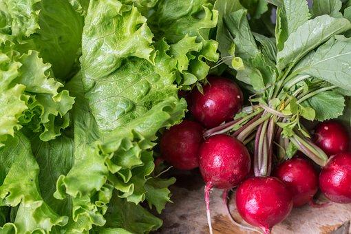Garden Radish, Vegetables, Healthy, Food, Fresh