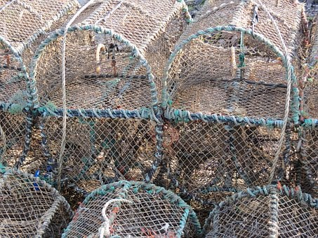 Lobster, Basket, Trap, Seafood, Crab, Fish, Ocean