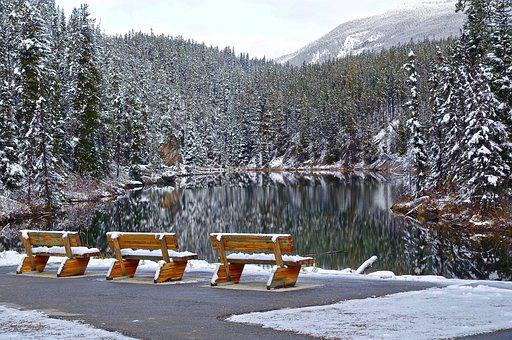Seats, Snow, Cold, Outdoor, Bench, Frost