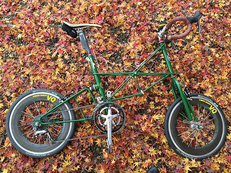 Bike, Small Car, Fallen Leaves