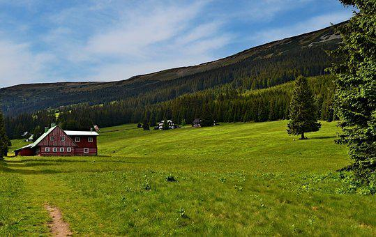 The Giant Mountains, Furnace, Nature, Meadow, Spring