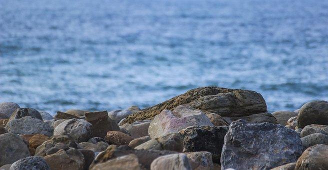 Rocks, Sea, Beach, Splash, Costa, Cliff, Wave, Ocean