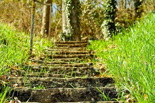 Stairs, Stone Steps, Clumping Stone, Rise, Forest